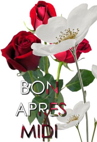BONJOURS BONSOIRS DU MOIS D'OCTOBRE - Page 3 20d21e10