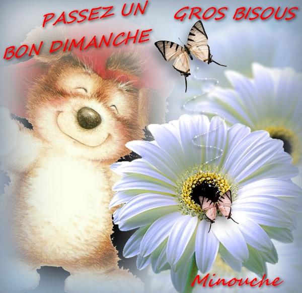 bonjour,bonsoir du mois de septembre  - Page 2 2u6ie510