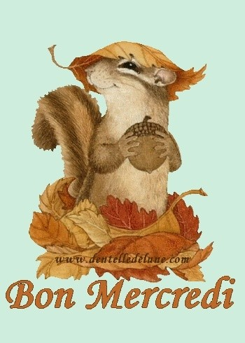 bonjour,bonsoir du mois de septembre  - Page 3 69942010