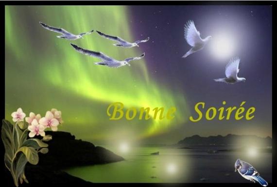 bonjour bonsour du mois de novembre - Page 4 92006510