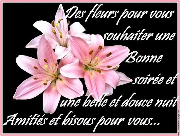 bonjour bonsour du mois de novembre - Page 6 F1ede610