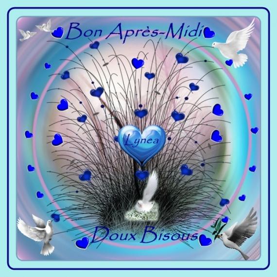 BONJOUR-BONSOIR DU MOIS D'AOUT - Page 6 Img-2110