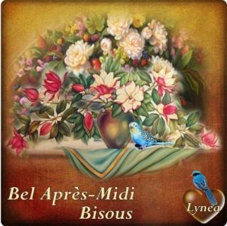 BONJOURS BONSOIRS DU MOIS D'OCTOBRE - Page 8 Img-2113