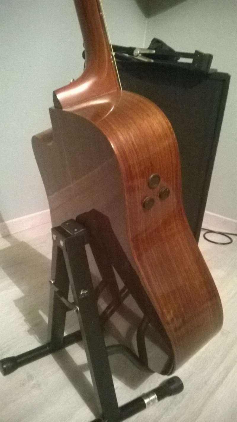 vente guitare Martin DCPA1 Wp_20112