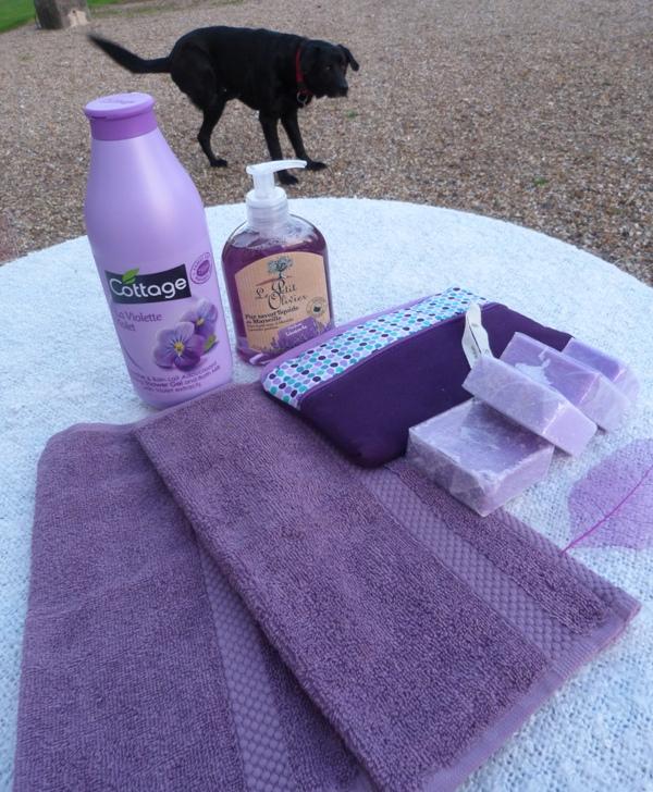 Photos - Mini SWAP violet [6/6 photos postées] P1070316