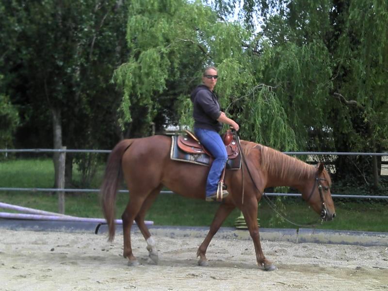 A VENDRE PRINCY ARINAC BAR 2011-011