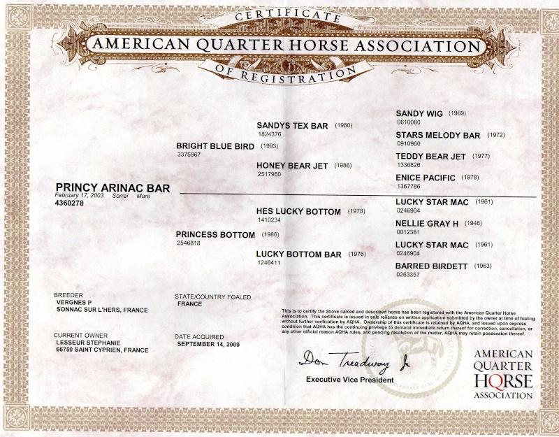A VENDRE PRINCY ARINAC BAR Img04010