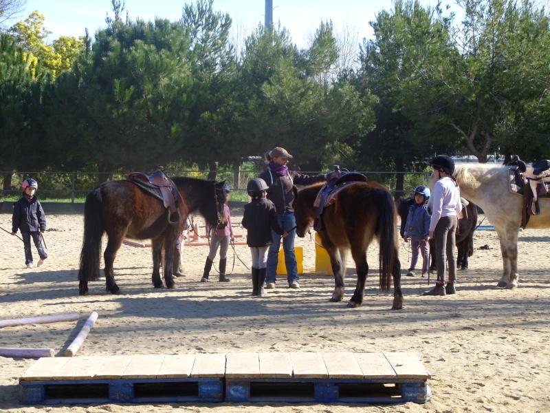 """Centre equestre western """"LA PALOUSE"""" st Cyprien Ss851110"""