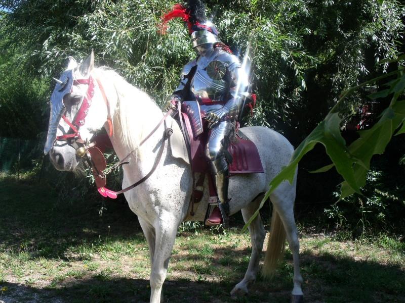 L'ecarlate a cheval Dscf1210