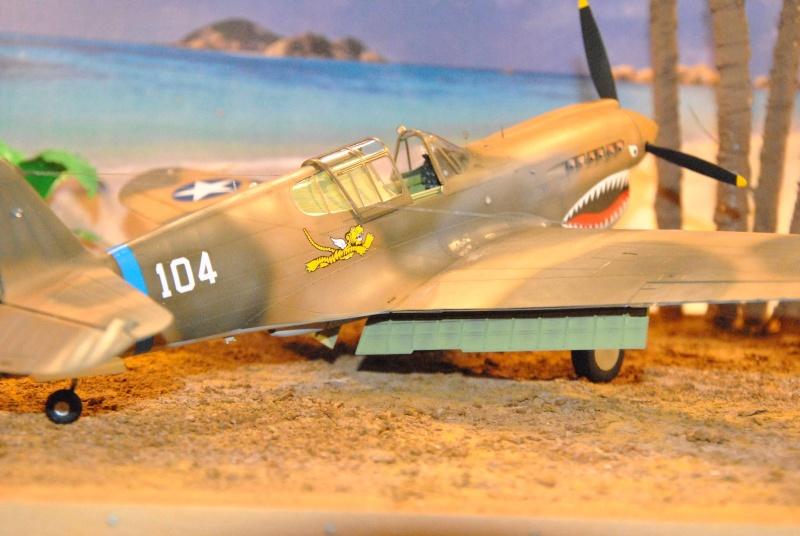 P-40 ex AVG Hasegawa 1/32 Dsc_1031
