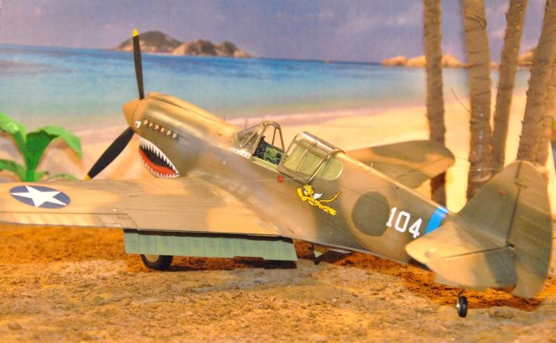 P-40 ex AVG Hasegawa 1/32 Dsc_1032