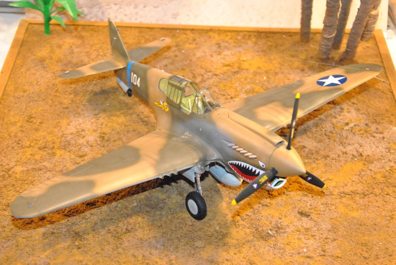 P-40 ex AVG Hasegawa 1/32 Dsc_1033