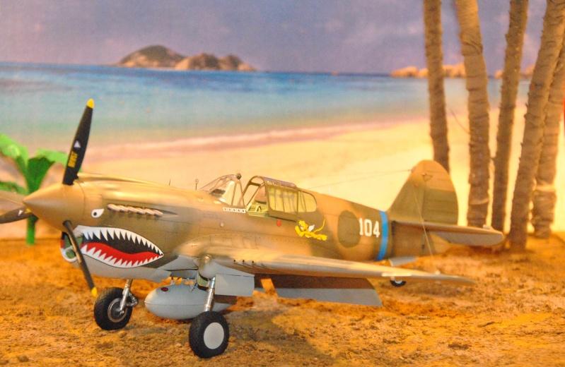P-40 ex AVG Hasegawa 1/32 Dsc_1034