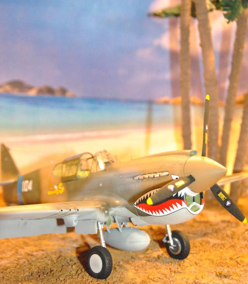 P-40 ex AVG Hasegawa 1/32 Dsc_1035