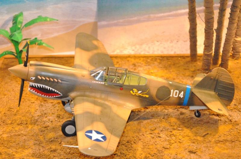 P-40 ex AVG Hasegawa 1/32 Dsc_1036