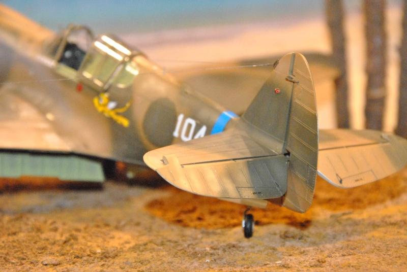 P-40 ex AVG Hasegawa 1/32 Dsc_1037