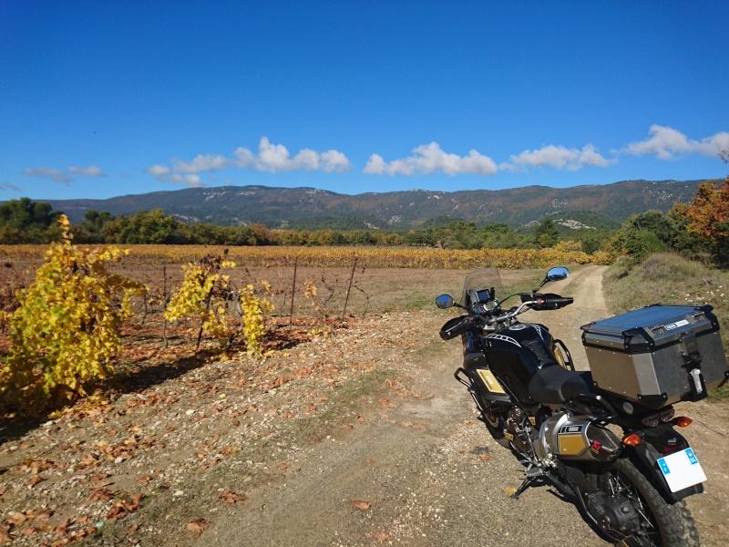 Vos plus belles photos de moto - Page 6 Dsc_0011
