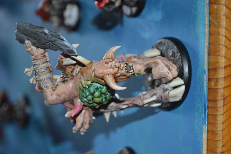 les vermines de Zitrus Dsc_0219