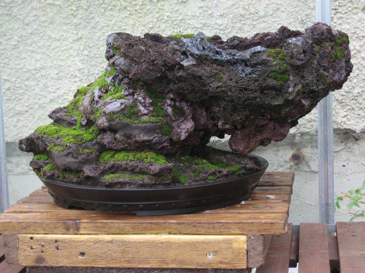 Rock planting in progress Rock114