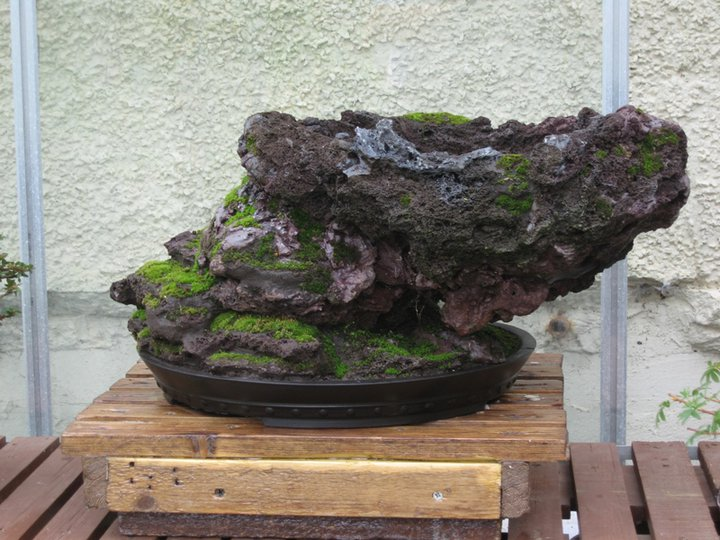 Rock planting in progress Rock210