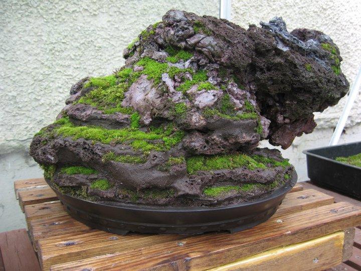Rock planting in progress Rock310