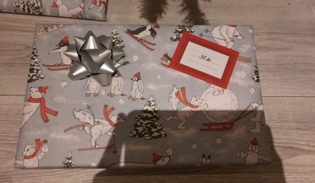 Père Noël Surprise édition 2020 : les inscriptions sont ouvertes - Venez jouer avec nous - Page 3 20201232