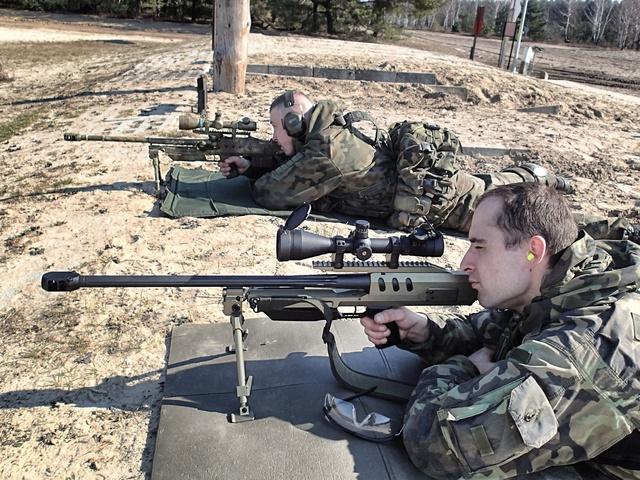 Les Forces Armées Polonaises/Polish Armed Forces - Page 15 Polish15