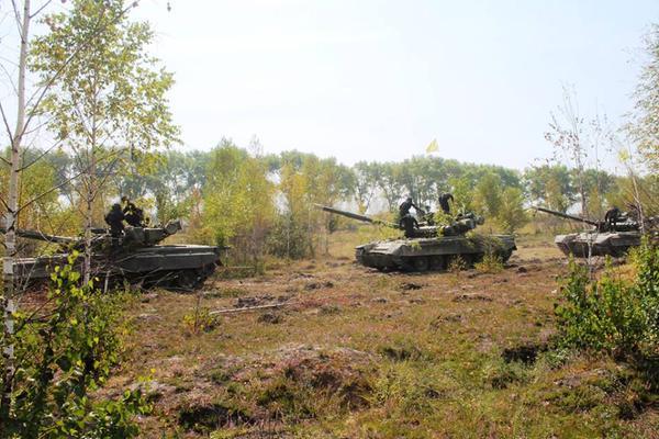 Ukrainian Armed Forces / Zbroyni Syly Ukrayiny - Page 10 Ukr310