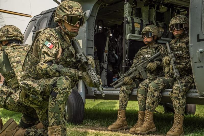 Armée Mexicaine / Mexican Armed Forces / Fuerzas Armadas de Mexico - Page 7 10106