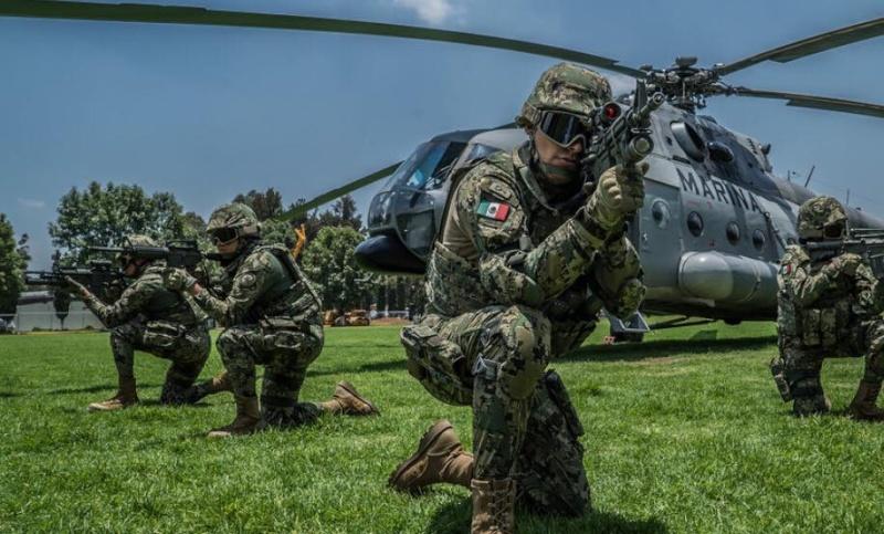 Armée Mexicaine / Mexican Armed Forces / Fuerzas Armadas de Mexico - Page 7 11114