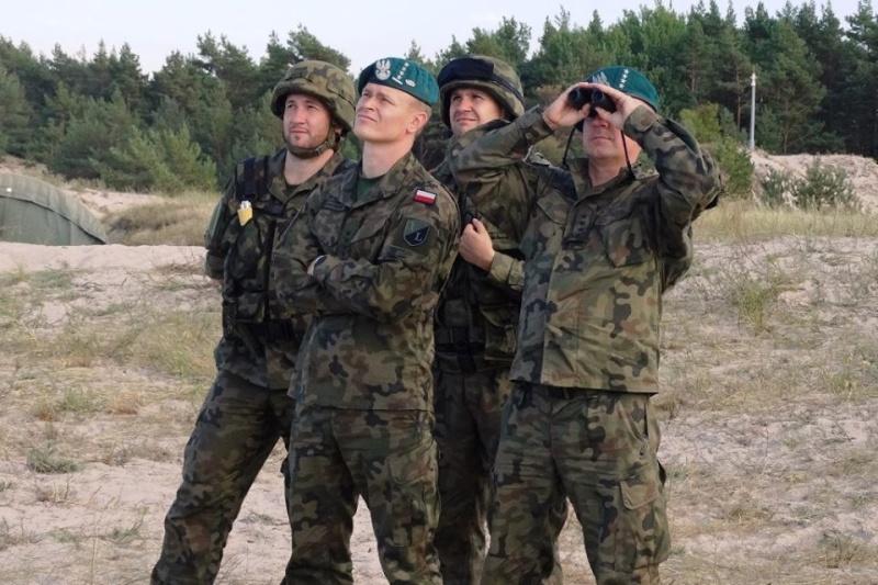 Les Forces Armées Polonaises/Polish Armed Forces - Page 15 1246