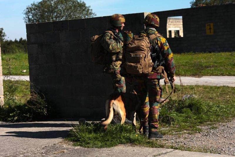Armée Belge / Defensie van België / Belgian Army  - Page 37 1321