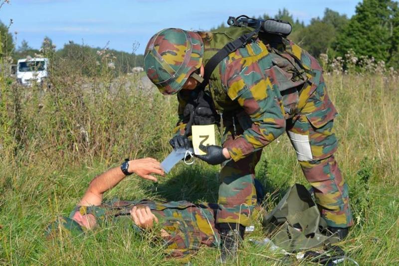 Armée Belge / Defensie van België / Belgian Army  - Page 37 1516