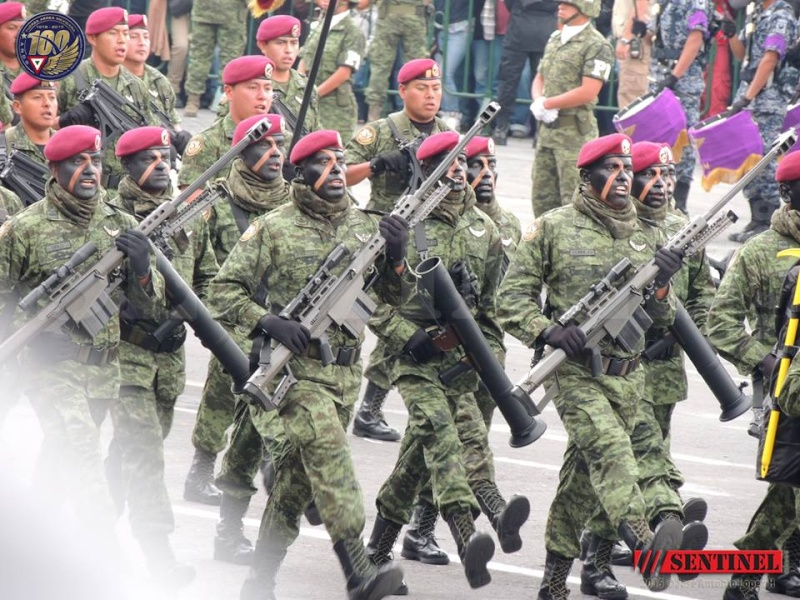 Armée Mexicaine / Mexican Armed Forces / Fuerzas Armadas de Mexico - Page 7 1540