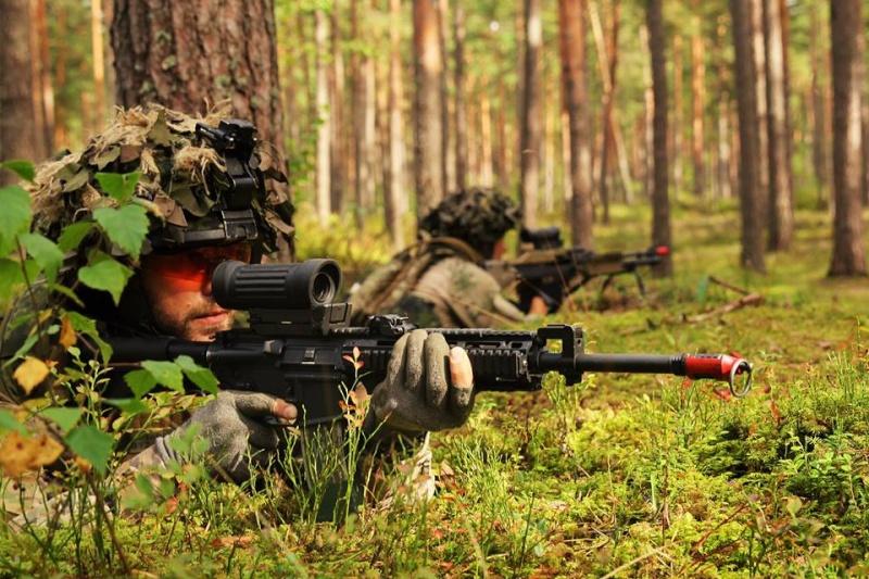 Armée danoise/Danish Defence(Forsvaret) - Page 8 2011