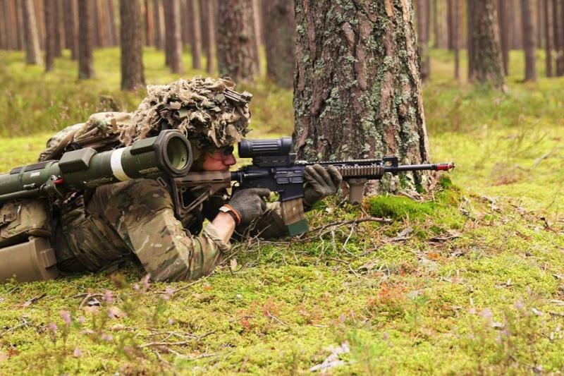 Armée danoise/Danish Defence(Forsvaret) - Page 8 371