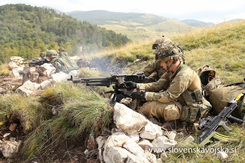 Slovenian Armed Forces / Slovenska vojska - Page 2 4195