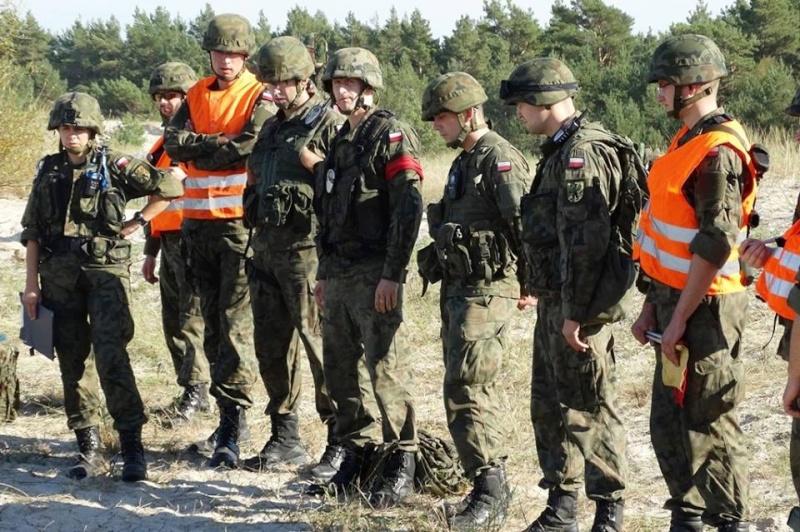 Les Forces Armées Polonaises/Polish Armed Forces - Page 15 4196