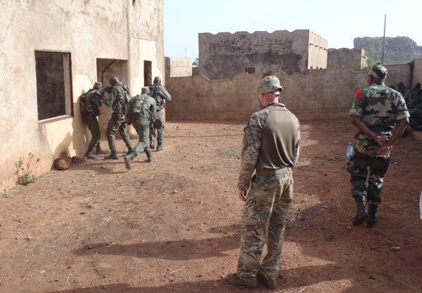 Intervention militaire au Mali - Opération Serval - Page 6 4229