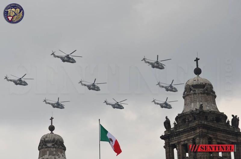Armée Mexicaine / Mexican Armed Forces / Fuerzas Armadas de Mexico - Page 7 4308