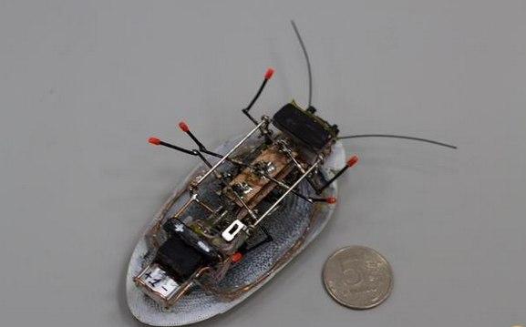 Robotisation 5214