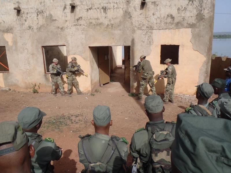 Intervention militaire au Mali - Opération Serval - Page 6 6137