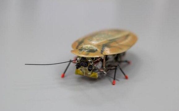 Robotisation 6158