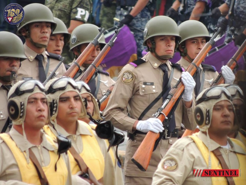 Armée Mexicaine / Mexican Armed Forces / Fuerzas Armadas de Mexico - Page 7 7139