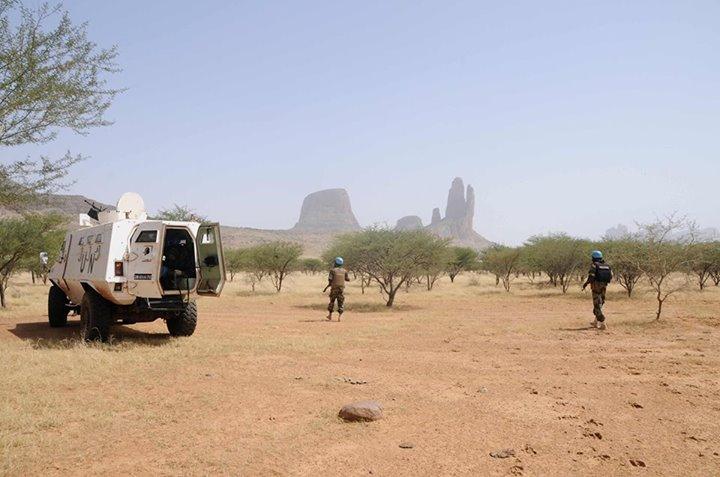 Intervention militaire au Mali - Opération Serval - Page 6 7183