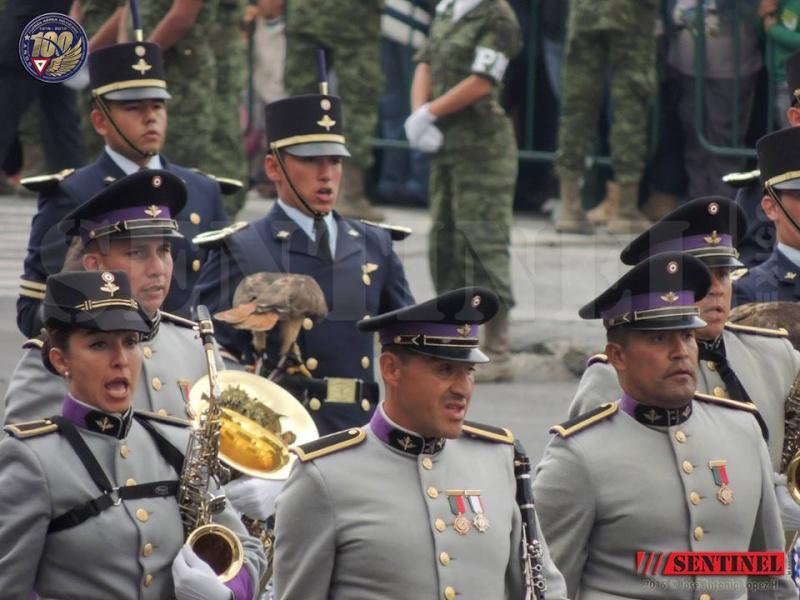 Armée Mexicaine / Mexican Armed Forces / Fuerzas Armadas de Mexico - Page 7 8110