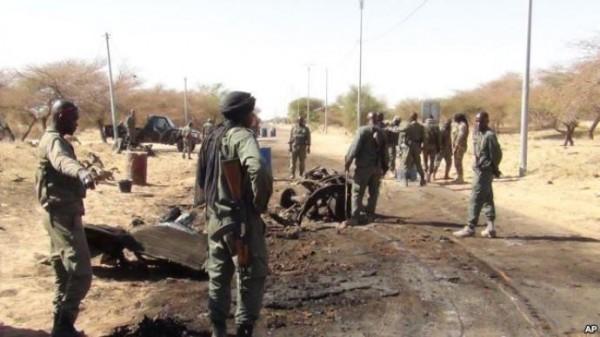 Intervention militaire au Mali - Opération Serval - Page 6 8156