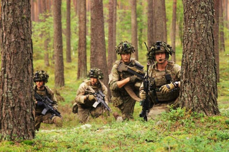 Armée danoise/Danish Defence(Forsvaret) - Page 8 824