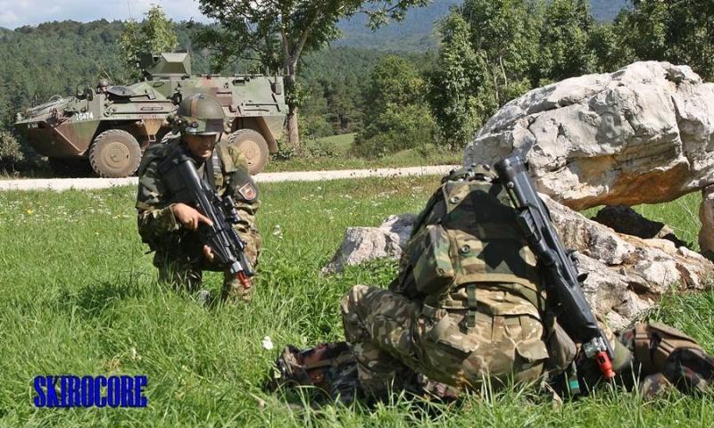 Slovenian Armed Forces / Slovenska vojska - Page 2 847