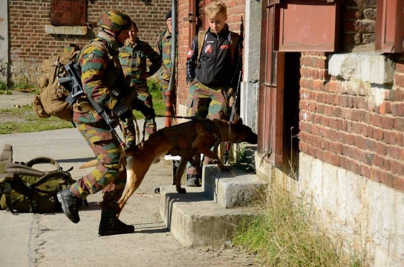 Armée Belge / Defensie van België / Belgian Army  - Page 37 8a18